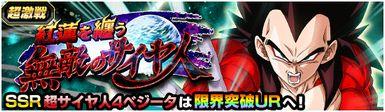 超激戦 超サイヤ人4ベジータ/「紅蓮を纏う無敵のサイヤ人」