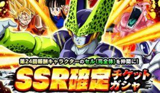 SSR確定チケット【天下一・報酬キャラ】