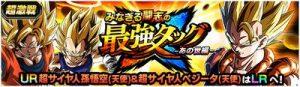 超激戦 「みなぎる闘志の最強タッグ!-あの世編-」(ゴジータ)