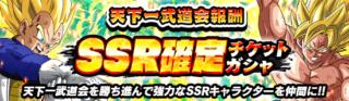 SSR確定チケット【天下一・通常ガチャSSR】