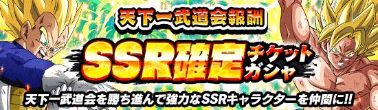 天下一第30回通常SSR確定チケットガチャ